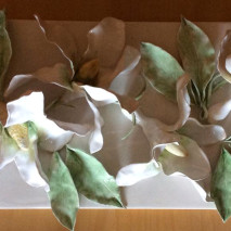 """La Magnolia bianca"""