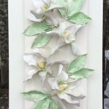 La magnolia Bianca