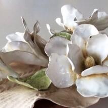 A-'Magnolia per Piero'